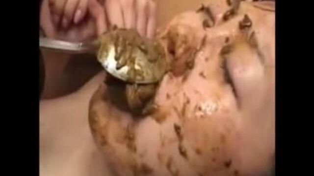 Feeding Shit